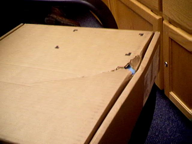 projection screen shipping box