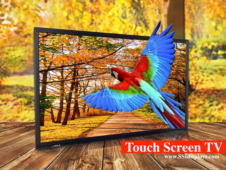 Touch Screen TV - Interactive Display